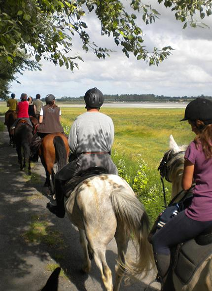 Randonnée cheval Caen, Vire, Flers